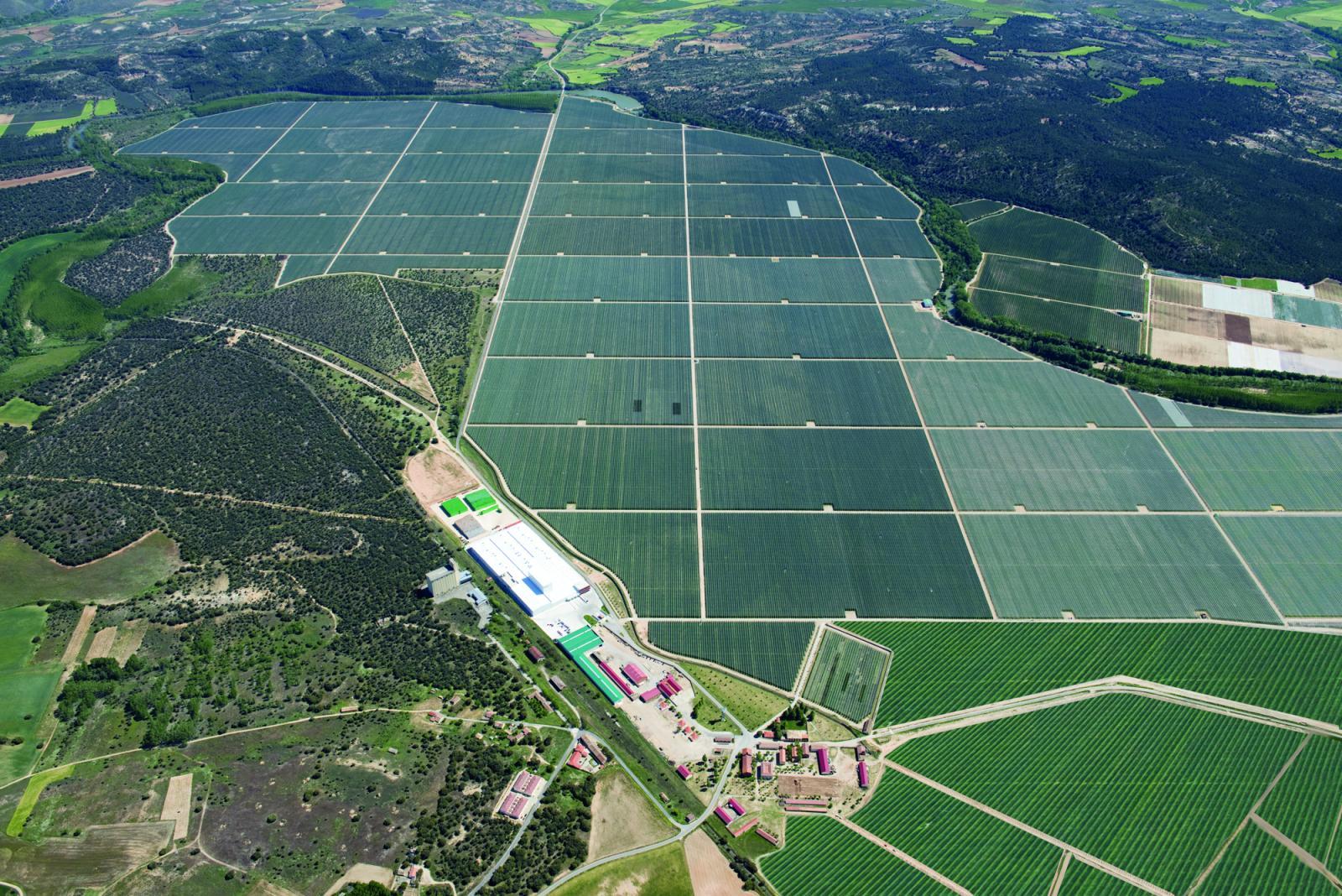 Nufri prevé recolectar 25 millones de kilos de manzanas en finca La Rasa (Soria)