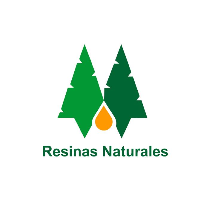 RESINAS NATURALES: LA INDUSTRIA QUE CUIDA EL BOSQUE